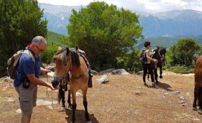 Ridning i södra Albanien13